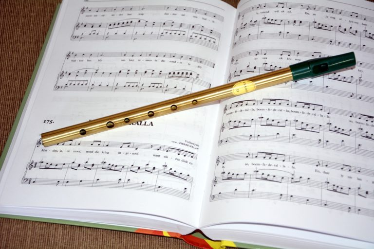 How To Learn To Play The Tin Whistle