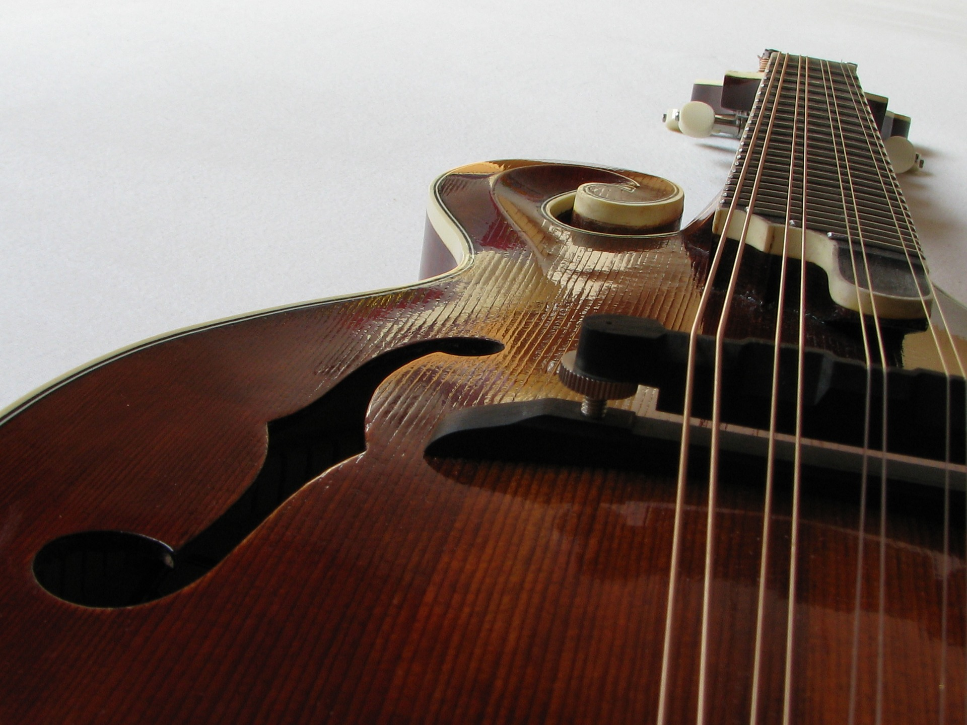 Best cheap mandolin for beginners